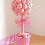 arbolito-rosa-mimosa